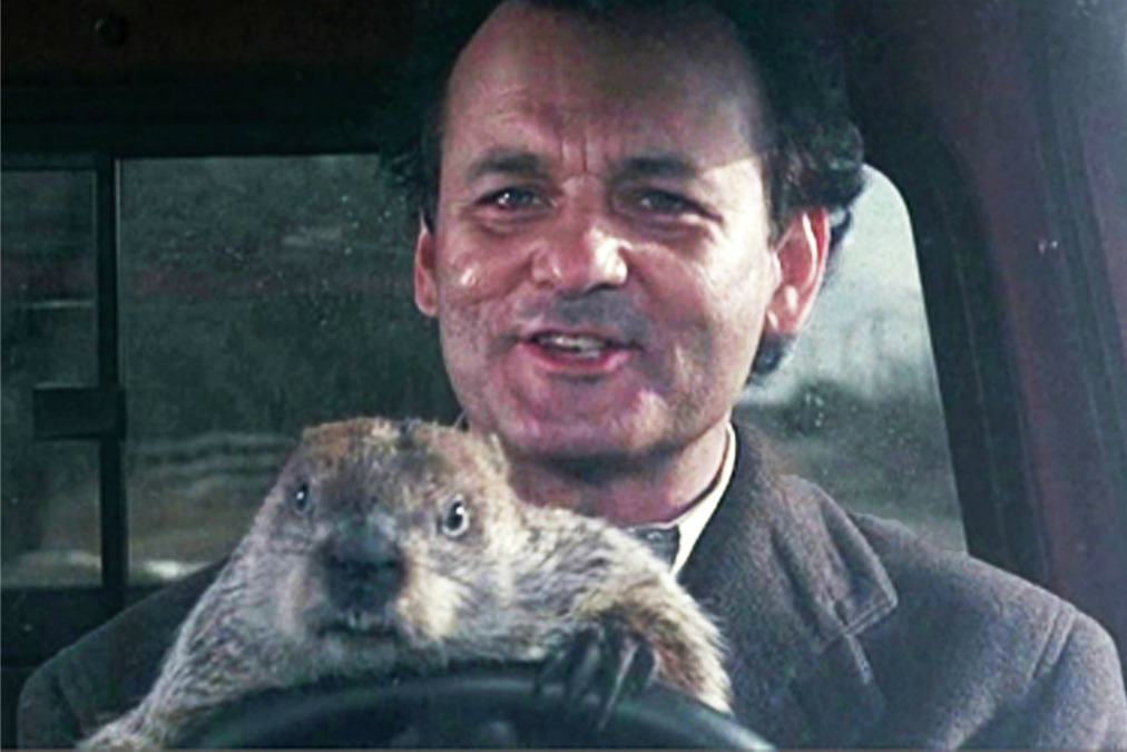Bill Murray lets the groundhog drive in Groundhog Day