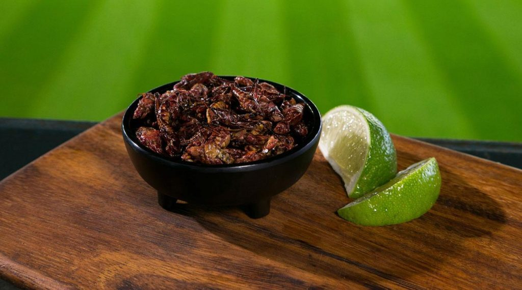 Grasshoppers are a favorite snack for Seattle Mariners fans